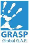 Global-GAP-Grasp-01